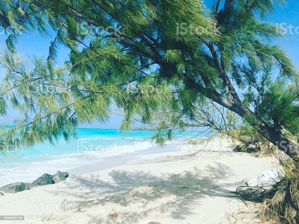 Grace Bay Beach beach, Turks and Caicos Islands stock photo