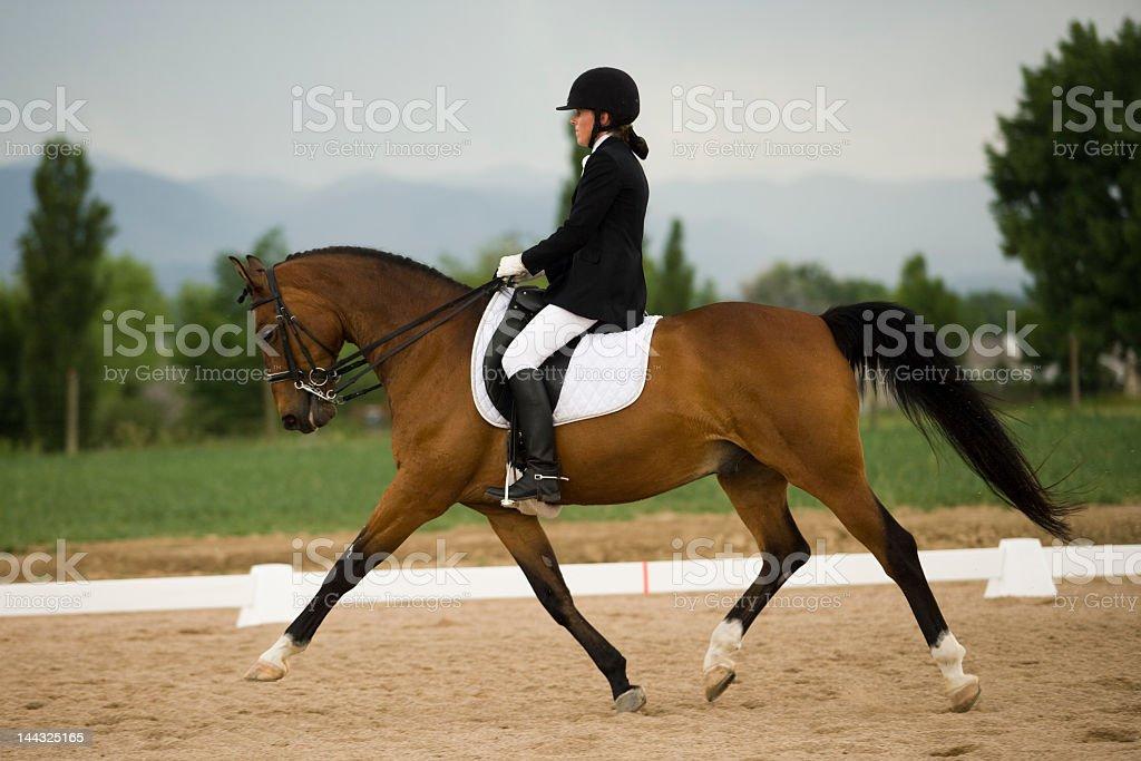 Graceful dressage horse & rider stock photo