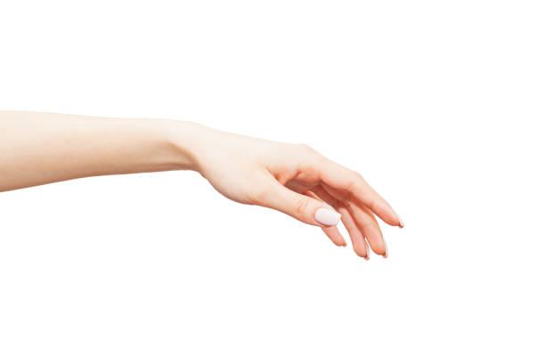 優美な手 - 女性 手 ストックフォトと画像
