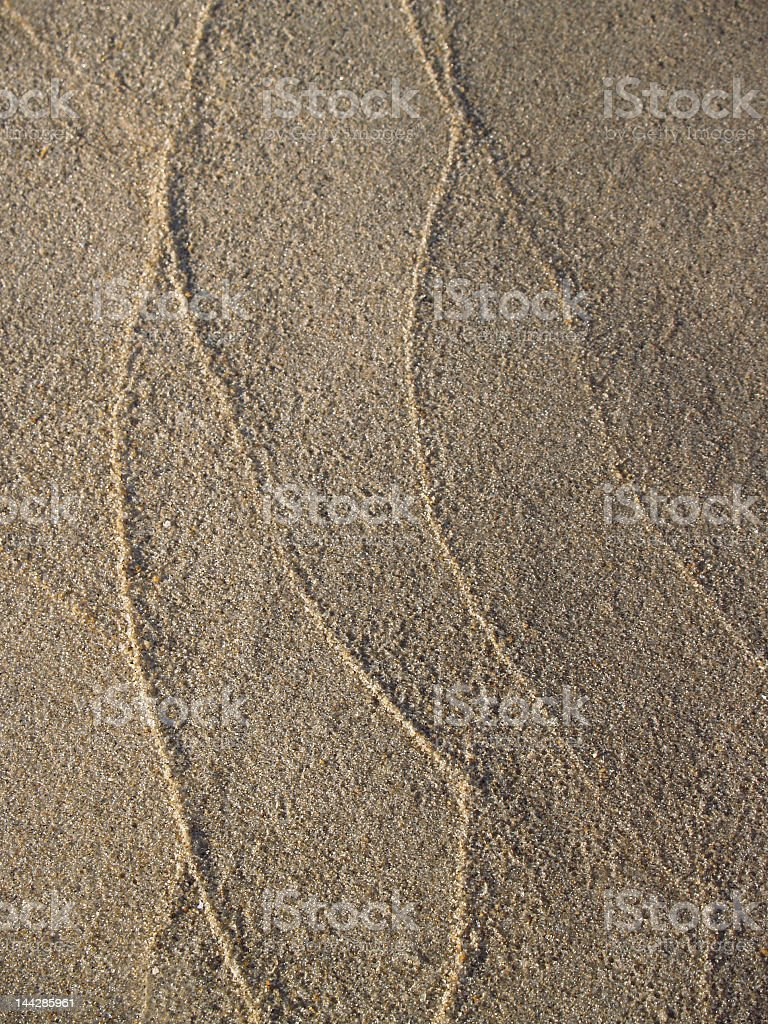 Graceful Sand Tracings in Ocean Grove, New Jersey stock photo