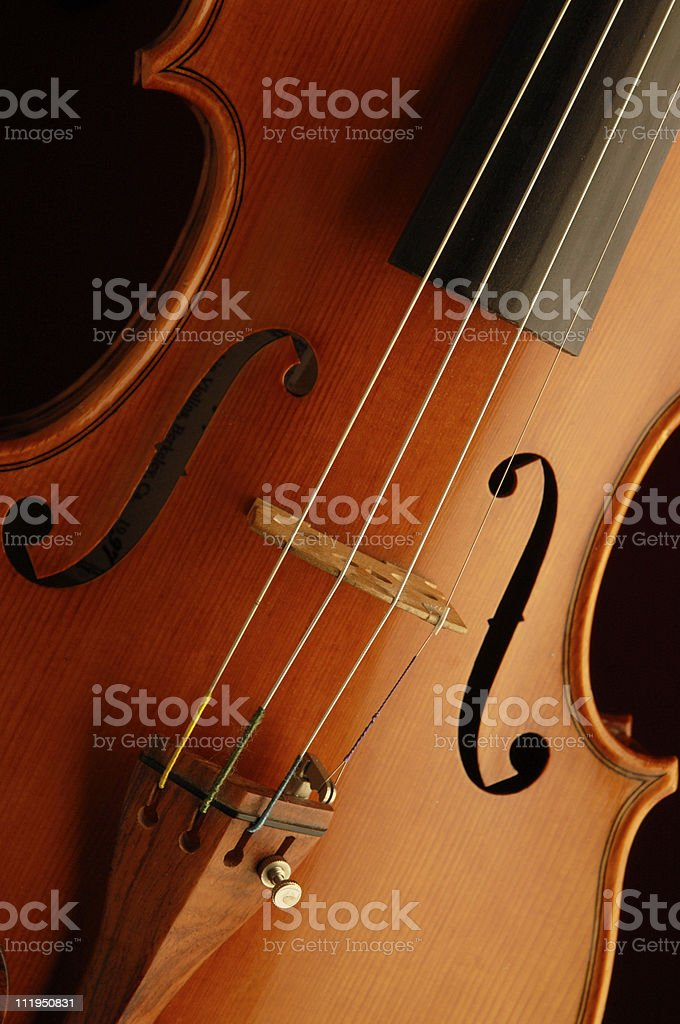 Graceful Violin Body on Black with Rosewood Tailpiece royalty-free stock photo