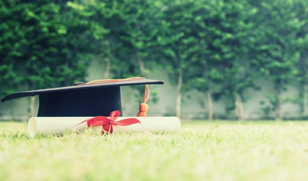 diplom-hut und zertifiziert in den garden.color ton - vorschuldekorationen stock-fotos und bilder