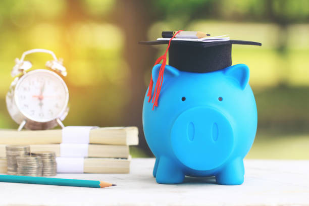 graduation hat on blue piggy bank with stack of coins money and banknote on natural green background, saving money for education concept - правописание стоковые фото и изображения