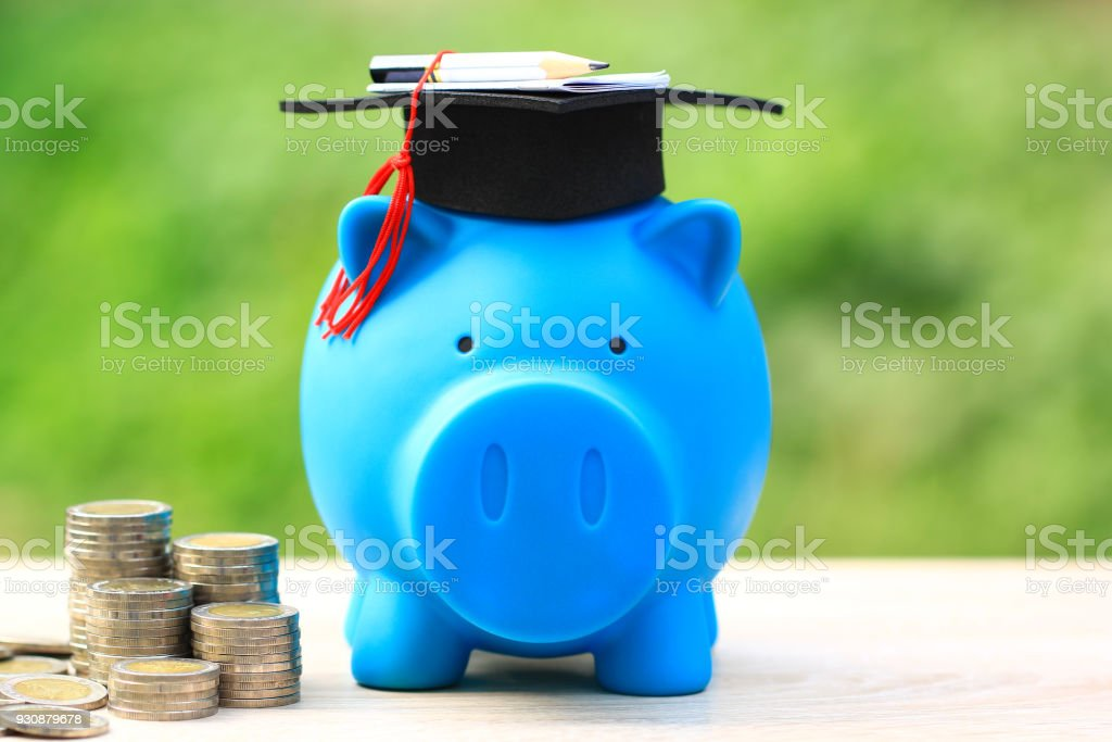 Graduation hat on piggy and tack of coins money on natural green background, Saving money for education concept stock photo