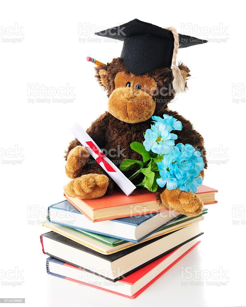 Mono de graduación - foto de stock