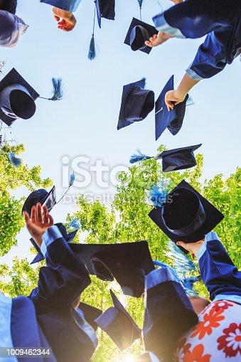959532468 istock photo Graduation 1009462344
