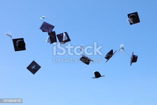 959532468 istock photo Graduation 1010846102