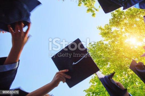 959532468 istock photo Graduation 959532470
