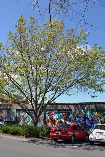 Graffiti e pintura Mural em Melbourne, Victoria - Austrália - foto de acervo