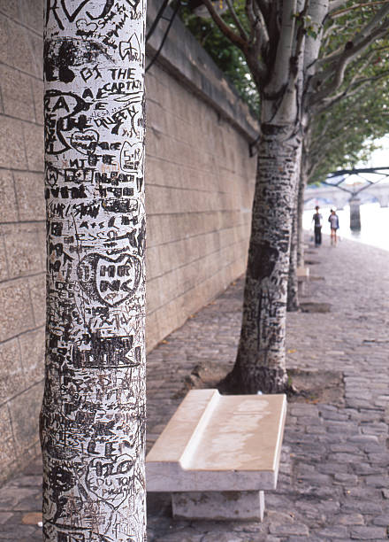 Grafitti sur Tronc d'arbre, Paris - Photo