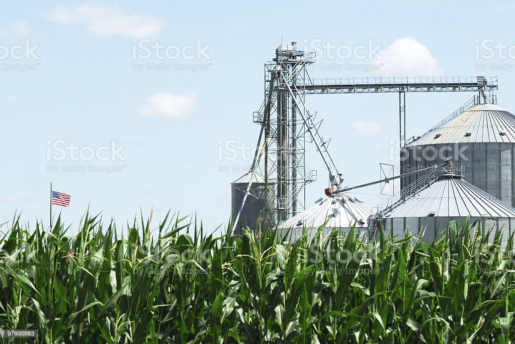 Grain Bins and Flag stock photo