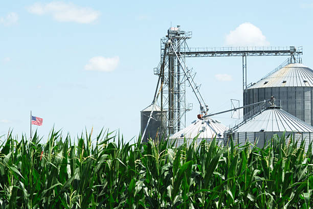 Grain-Abfalleimer und Flagge – Foto