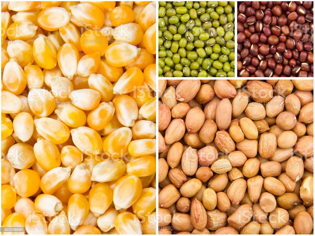 grain collection stock photo