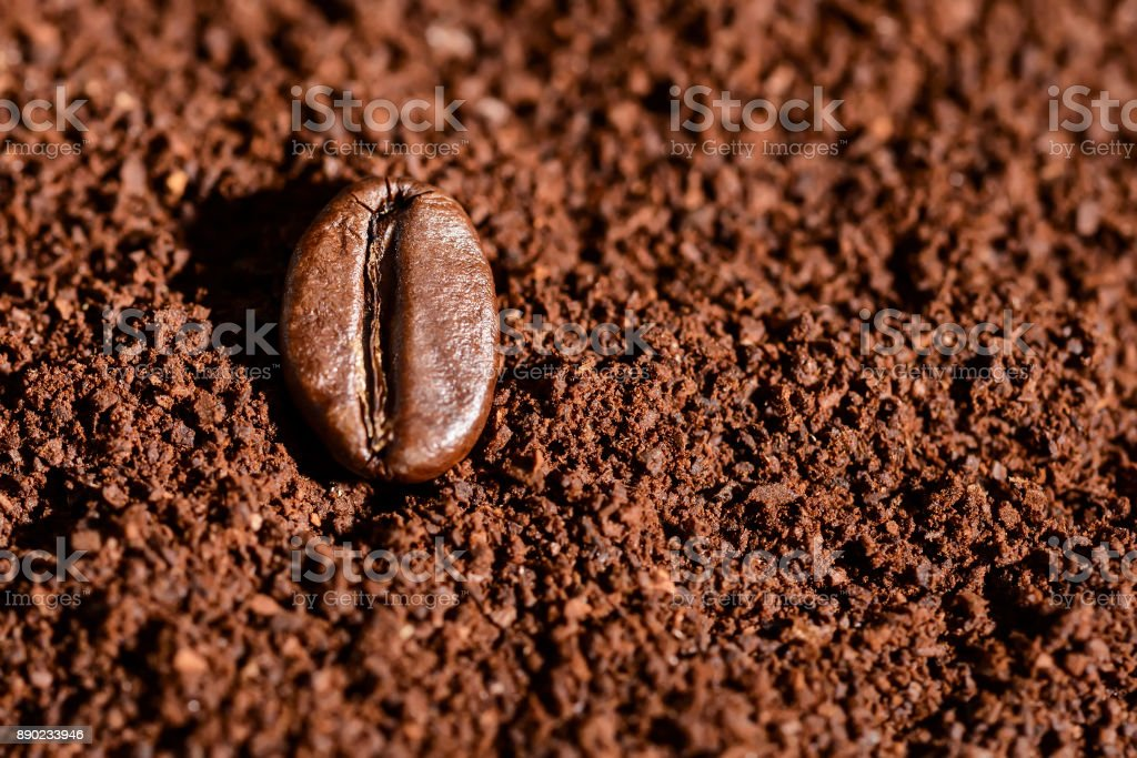 Grain of roasted brown coffee lies on freshly ground coffee,...