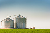 Horizontal rural landscape showing two metal grain bins with a green farm field in the foreground and a semi truck next to the bins, ready to load cereal plant harvest for the agricultural industry. It's a bright, sunny day with a clear blue sky in the Midwest, U.S.A.