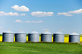 Grain silo storage containers in the prairie with yellow canola field near Edmonton, Alberta, Canada.