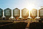Grain Siloshttp://www.twodozendesign.info/i/1.png