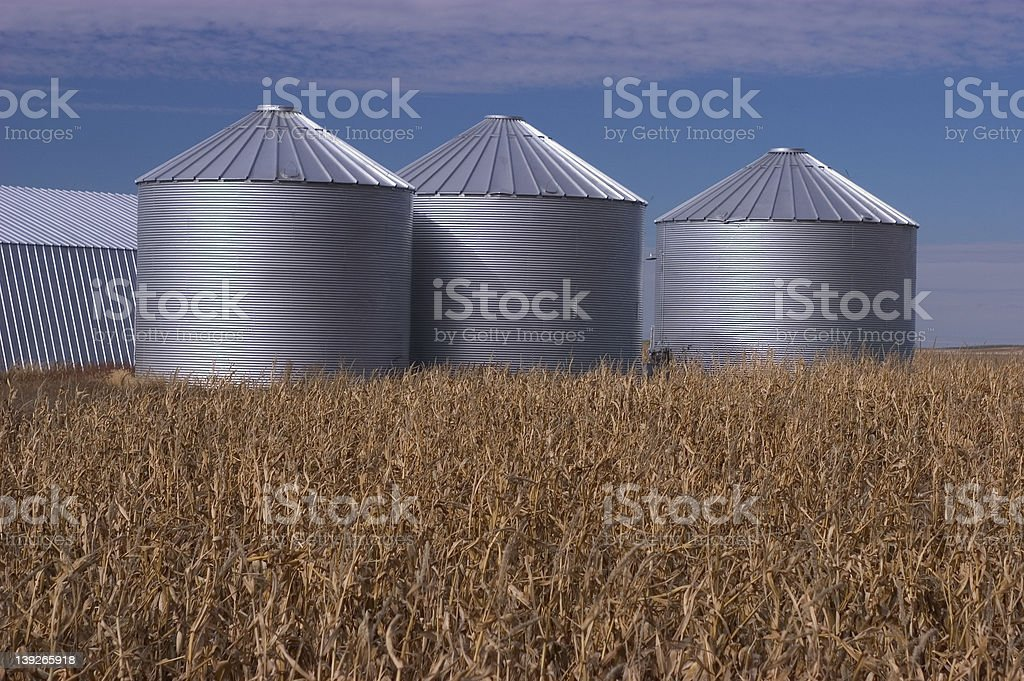 Grain storage bins royalty-free stock photo
