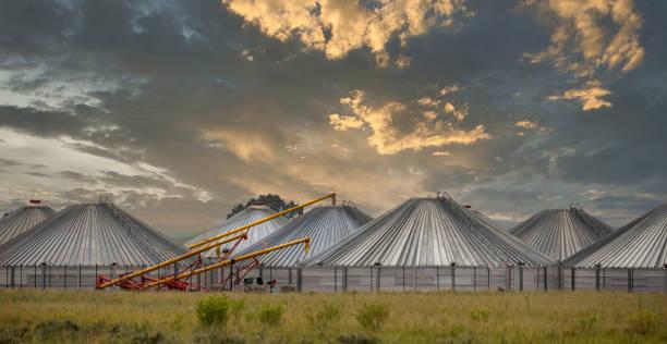 grain storage silo facility