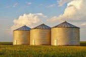 three metallic structures on farm for grain storage