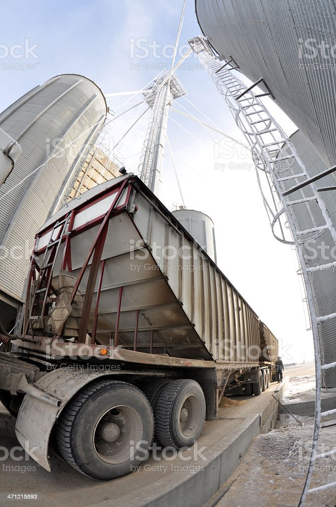 Grain Terminal royalty-free stock photo