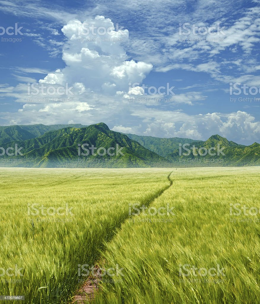 grainfield in fantasy landscape royalty-free stock photo
