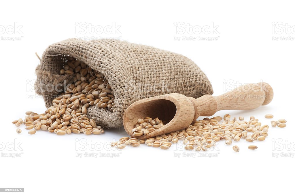 Grains in small burlap sack royalty-free stock photo
