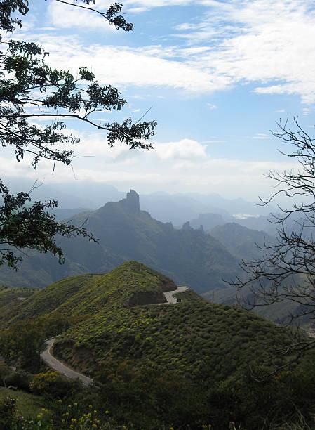 gran canaria landscape - fsachs78 stockfoto's en -beelden