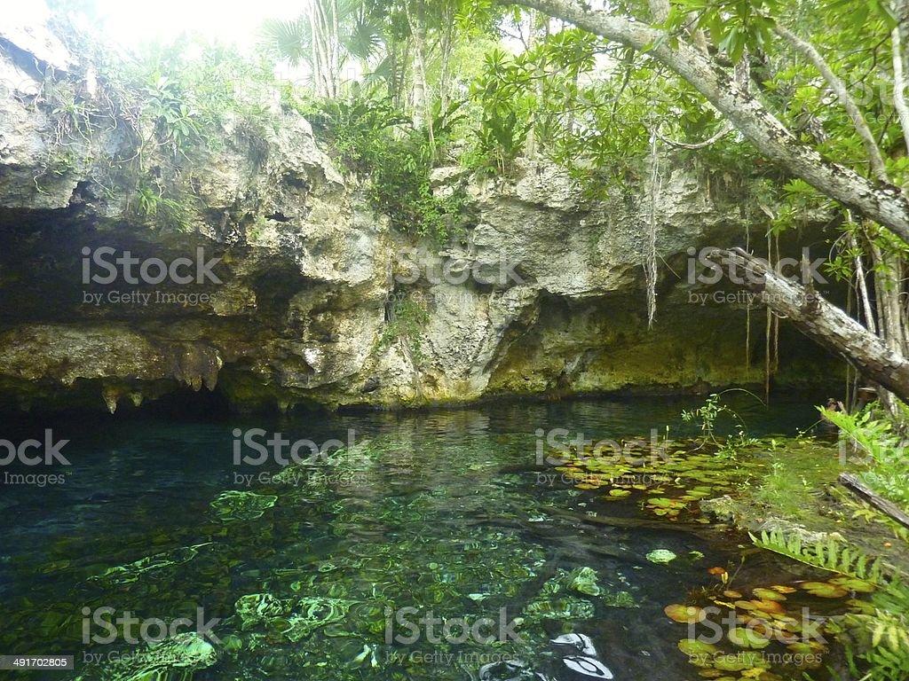 Gran Cenote - Royalty-free Cenote Stock Photo
