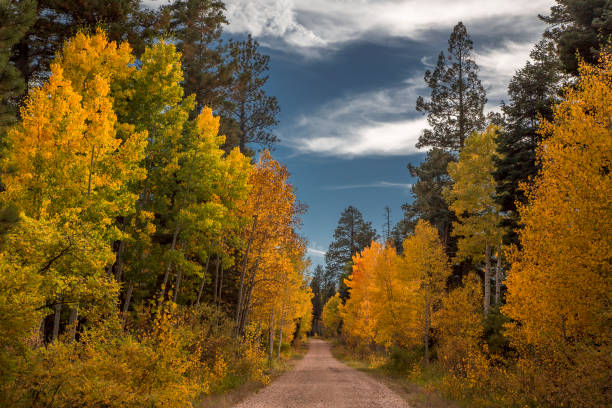 Grand Canyon Autumn stock photo