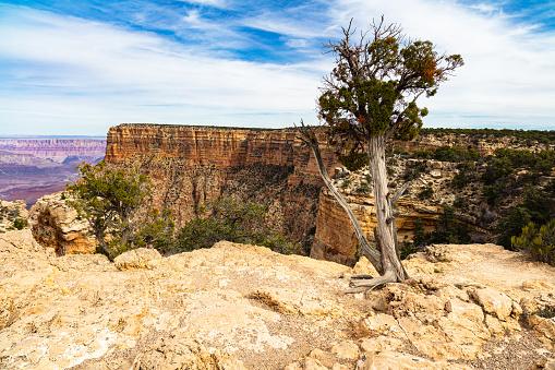 Beautiful Grand Canyon National Park along the South Rim in Arizona.