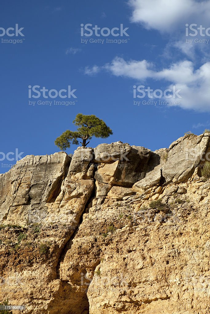 Grand Canyon Mountain Top View royalty-free stock photo