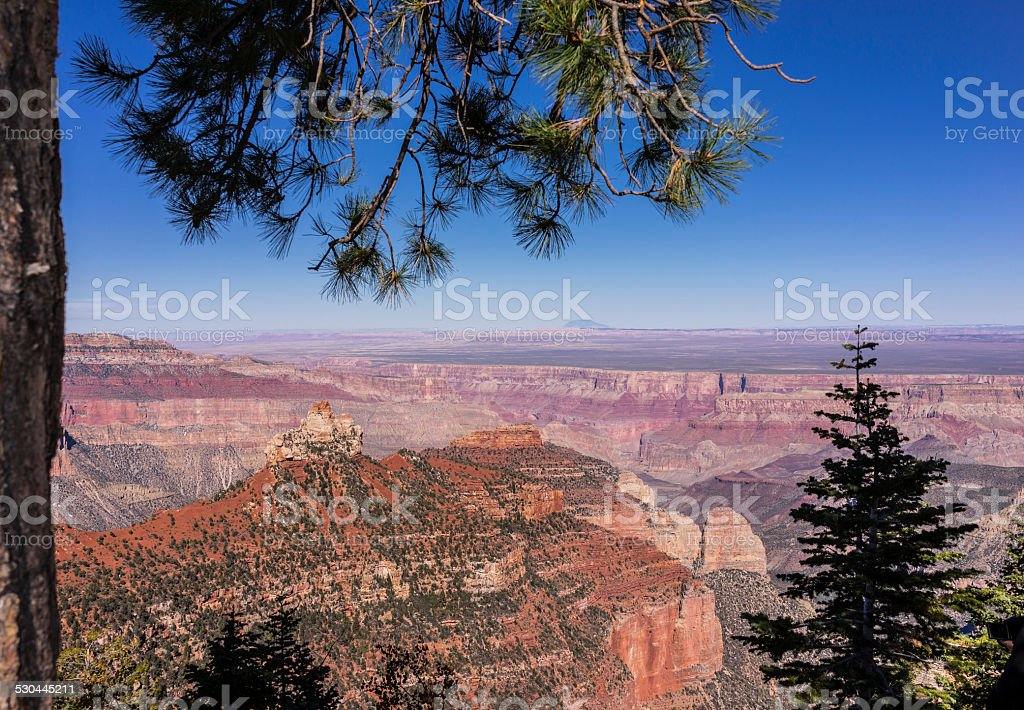 Grand Canyon National Park. Versante nord del Grand Canyon. Point da Vista Encantada - foto stock