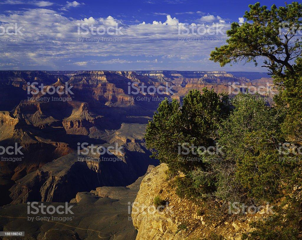 Grand Canyon National Park   (P) royalty-free stock photo