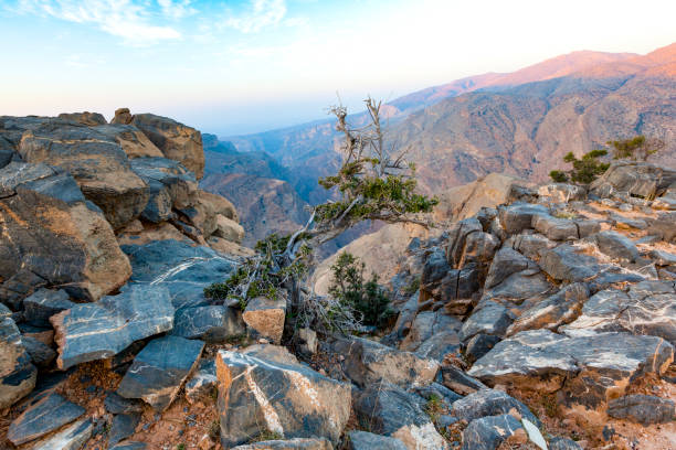 grand canyon von oman. - oman travel stock-fotos und bilder