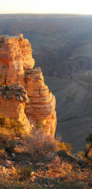 Grand Canyon Sunrise Vertical Pan stock photo