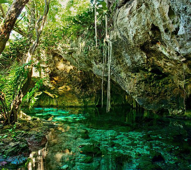 grand cenote in mexico. - laguna foto e immagini stock