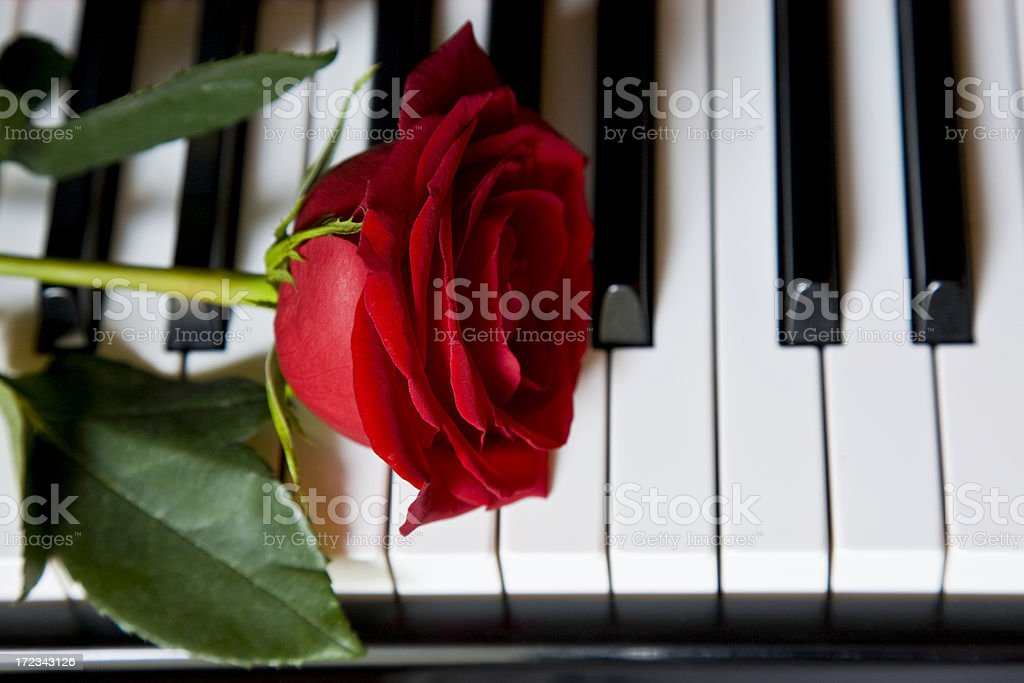 Grand Piano (XL) royalty-free stock photo
