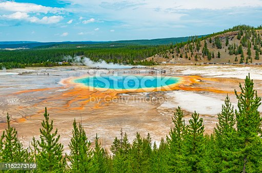 Landscape of the Grand Prismatic Spring hot spring through a pine tree forest and distant silhouettes of tourists walking on the elevated walkway, Wyoming, USA (United States of America).