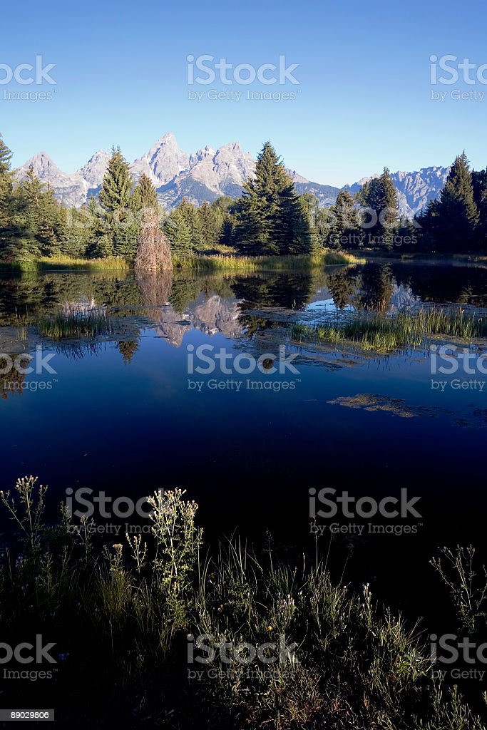 Grand Tetons View royalty-free stock photo