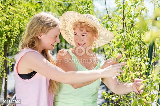 Granddaughter and grandmother spending time together in a summer garden, taking care of fruit trees. Family generations concept.