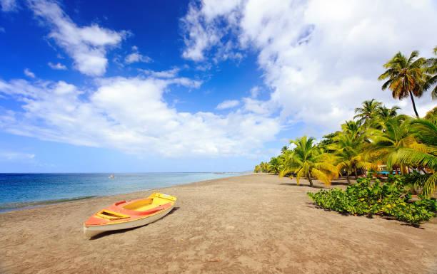 Grande Anse Le Coin Beach, Le Carbet, Martinique, Caribbean stock photo