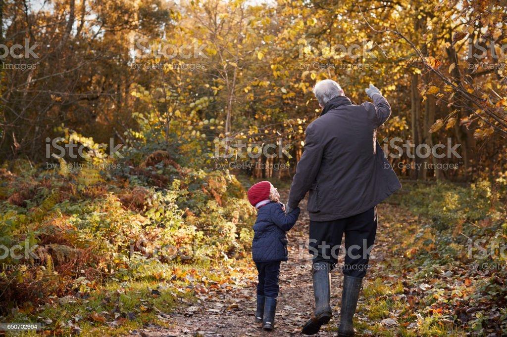 Grandfather And Granddaughter Enjoying Autumn Walk - foto de stock