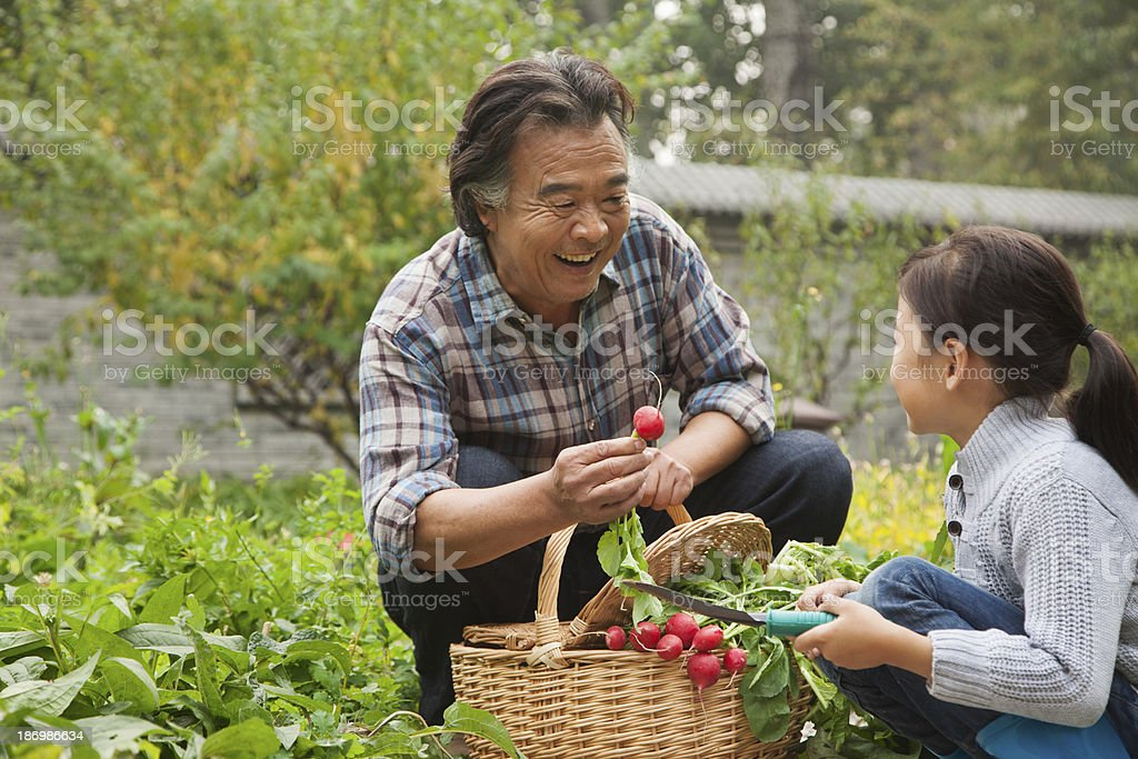 Grandfather and granddaughter in garden stock photo