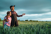 Senior farmer showing to his granddaughter a wheat field