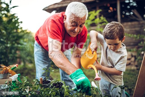 istock Grandfather and grandson in garden 971388782