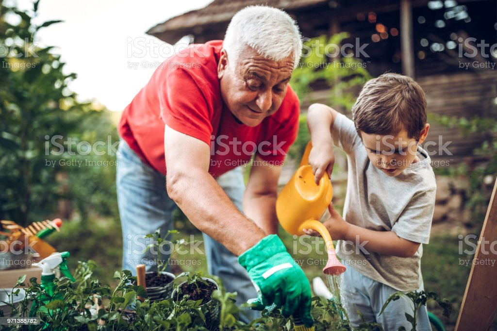 Grandfather and grandson in garden stock photo