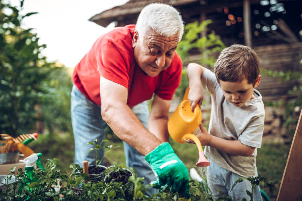 grandfather and grandson in garden - geriatrics stock pictures, royalty-free photos & images