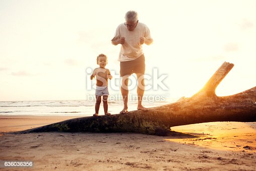 istock Grandfather and grandson in the beach 636036356