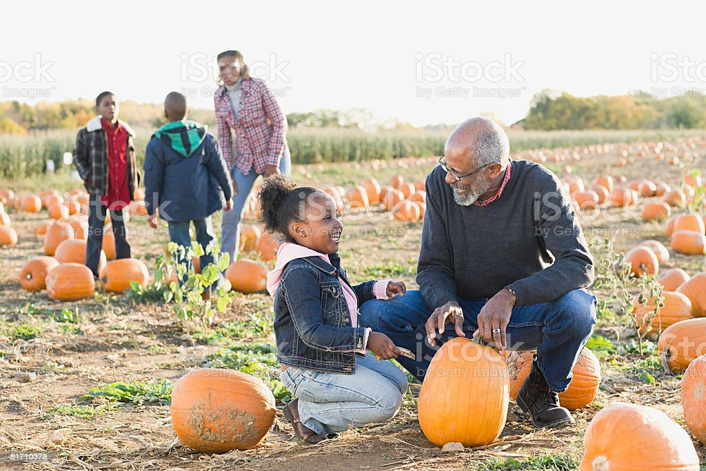 A grandfather and his granddaughter looking at pumpkins 免版稅 stock photo